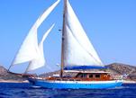 Barca a vela verniciata e protetta con vernici ecologiche Plack